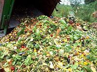 Vi sinh ủ phân hữu cơ