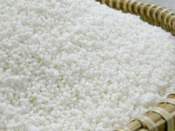 Gạo lương thực