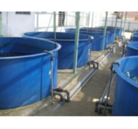 Bồn nuổi thủy sản Composite FRp