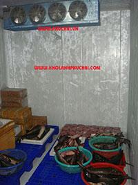 Lắp đặt kho trữ đông thủy sản