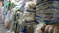 Nhựa phế liệu LDPE