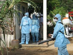 Dịch vụ diệt ruồi muỗi