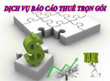 Báo cáo thuế hàng tháng quý