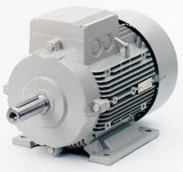 Động cơ Siemens
