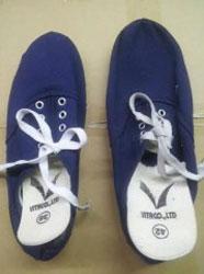 Giày vải Vitaco