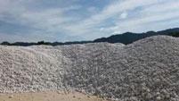 Bột đá trắng siêu mịn