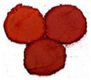 Bột màu oxit sắt đỏ tươi