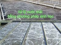 Xử lý nước thải PP sinh học