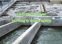 Xử lý nước thải công ty