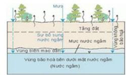 Giấy xin khai thác nước ngầm