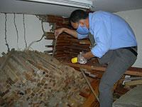 Phòng mối công trình bằng hóa chất