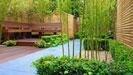 Cây xanh sân vườn