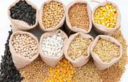 Nguyên liệu sản xuất thức ăn chăn nuôi