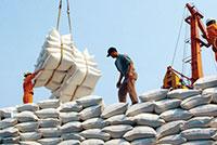 Xuất khẩu gạo