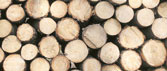 Nhập khẩu gỗ