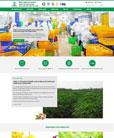 Mẫu website công ty chế biến thực phẩm