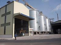 Móng Silo nhà máy CJ Long An