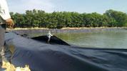 Màng HDPE lót bể chứa nước thải