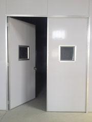 Cửa Panel EPS 2 cánh