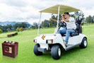 Ắc quy xe Golf