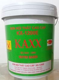 Sơn KAXX