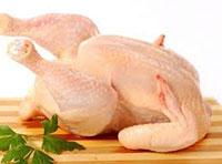 Thịt gà sạch