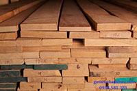 Ván gỗ sồi