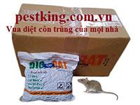 Dịch vụ diệt chuột bằng thuốc