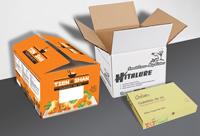 In thùng carton 3 lớp