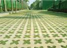 Gạch bê tông trồng cỏ