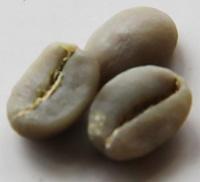 Arabica chế biến ưkhô