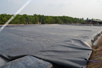 Bạt lót hồ tôm cá