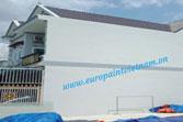 Chống thấm tường mới Polyurethane