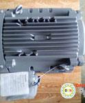 Motor điện Hitachi chân đế 11kw 15hp
