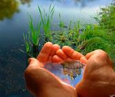 Phân tích nước mặt