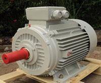 Động cơ điện 3 pha Enertech