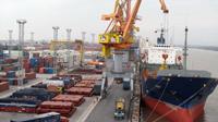Bãi container cho các hãng tàu