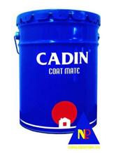 Sơn kẻ vạch Cadin