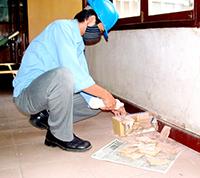 Dịch vụ diệt mối tại nhà