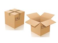 Bao bì thùng carton