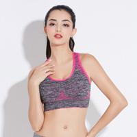 Áo tập gym