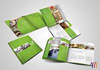 Thiết kế và in ấn profile