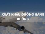 Dịch vụ xuất khẩu đường hàng không