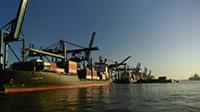 Dịch vụ ủy quyền xuất nhập khẩu