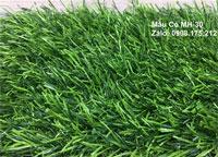 Thảm cỏ MH-30 (Cỏ cao 3 phân)