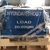 Palang Cáp Điện Hyundai