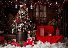Tổ chức Noel