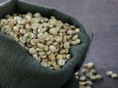 Cà phê nhân sống Robusta S16