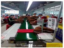 Băng tải PVC ngành may