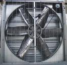 Quạt hút công nghiệp EF50
